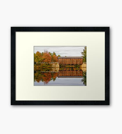 New Hampshire Foliage 2008 #4 Framed Print