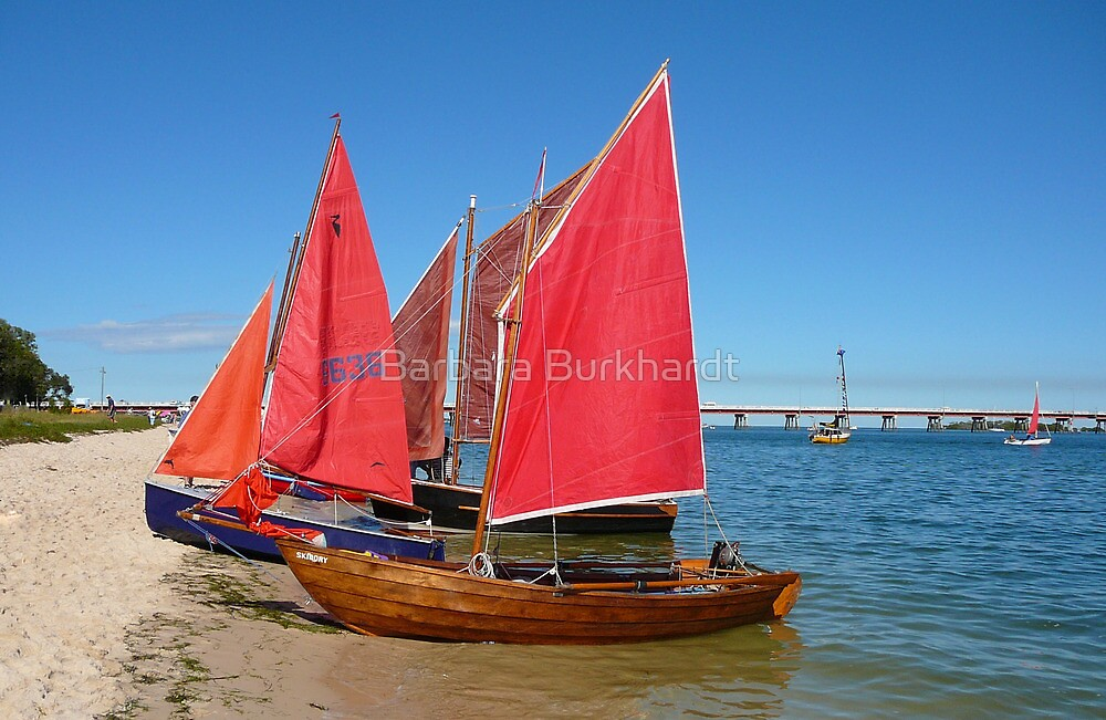 Red Sails - Bribie Island by Barbara Burkhardt