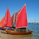 Red Sails - Bribie Island by Barbara Burkhardt