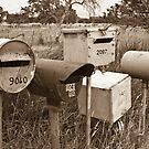 Roadside Mail Boxes in Sepia by pennyswork
