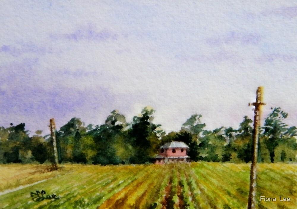Miniature Series  ''April Vines'' by Fiona  Lee
