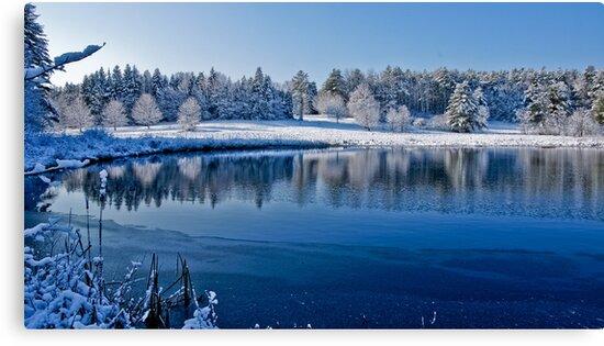 Winter Lake Scene 2 by Edward Myers