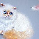 Kitten and feather #2 by Elena Kolotusha