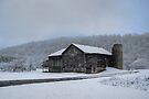 Farmland Snow Squall by Gene Walls