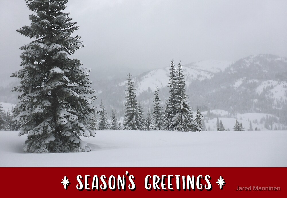 Snowy Mountains and Trees Holiday Card by Jared Manninen