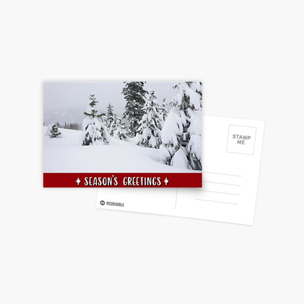 Winter Mountains and Forest Holiday Card Postcard
