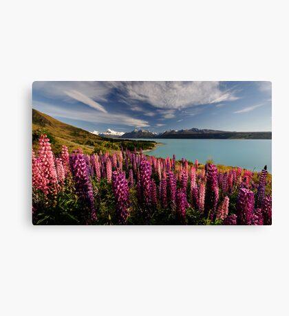 Pukaki Postcard Canvas Print