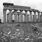 Sicilian temple by Christine Oakley