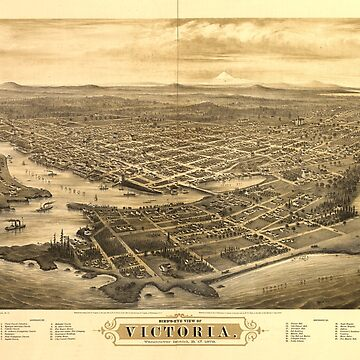 Bird's Eye View of Victoria, British Columbia, Canada (1878) by allhistory
