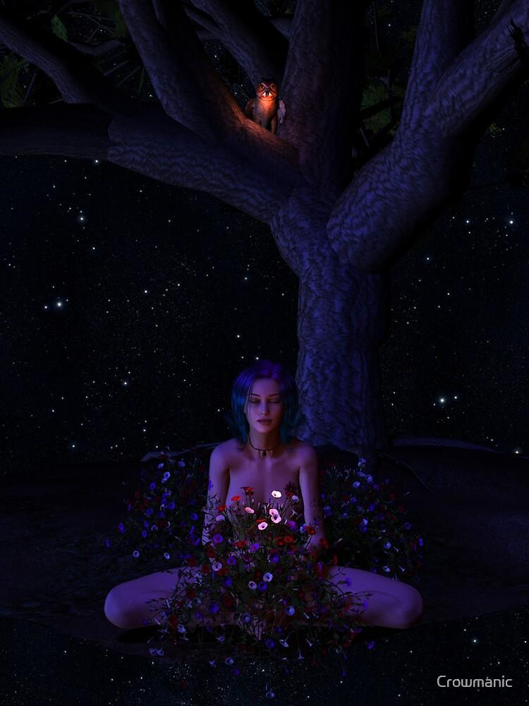 When I Wish by Crowmanic