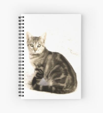 Quelle Surprise Spiral Notebook
