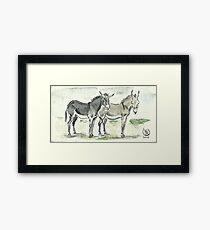 """Sardinian donkeys"" Framed Print"