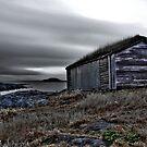 Viking boat shed. by FraserJ