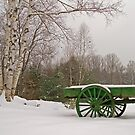 Little Green Snowy Wagon  by Alana Ranney