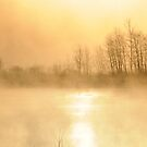 Sunrise on a Foggy Winter Morning II by Louise Fahy