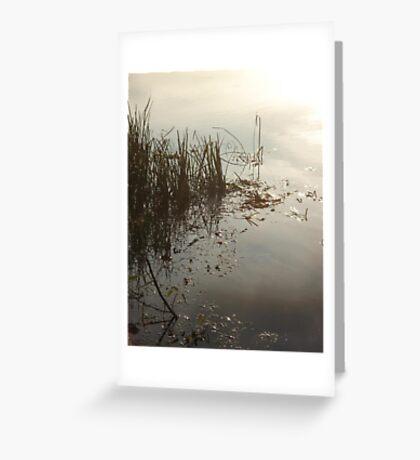 Reeds on Econfina Greeting Card