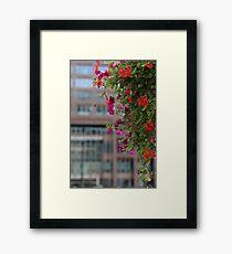 Flourish! Framed Print