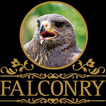 Falconry - Buzzard - Harri's Hawk by Vectorbrusher