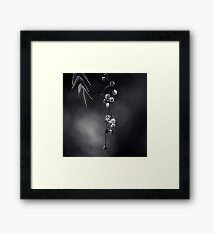 Quiet Suspension Framed Print