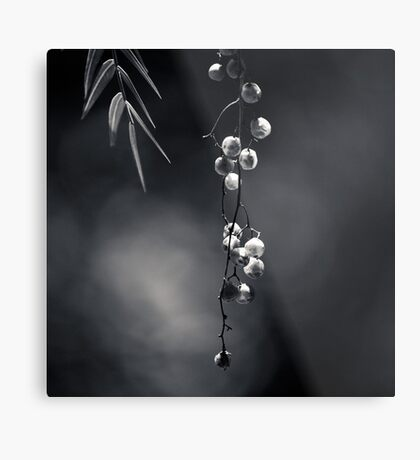 Quiet Suspension Metal Print