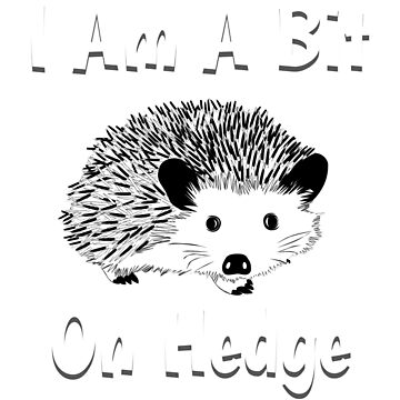 Funny Hedgehog, Hedgehog Shirt, Hedgehog Shirt Kids, Hedgehog Shirt Woman, Hedgehog Shirt For Girls, Hedgehog Shirt Boys, Hedgehog Shirts, Hedgehog Tshirt, Hedgehog Gifts by mikevdv2001