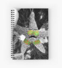 Starfish Christmas Ornament Spiralblock