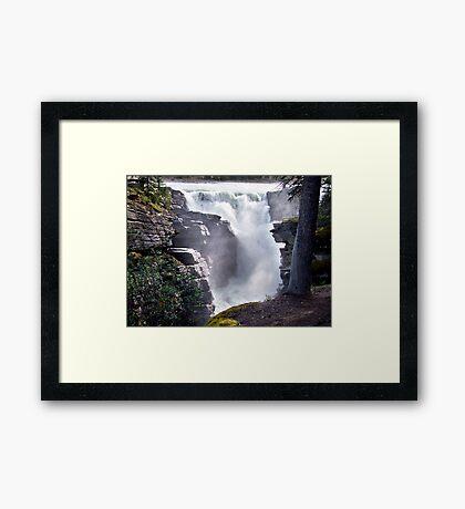 Athabaska Falls(2) Framed Print