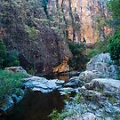 Twin Falls Gorge - Kakadu National Park, NT by Dilshara Hill