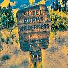 Ansel Adams Wilderness Area (Blue/Yellow Theme) by Joe Lach