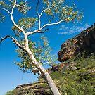 Nourlangie Rock - Kakadu National Park, NT by Dilshara Hill