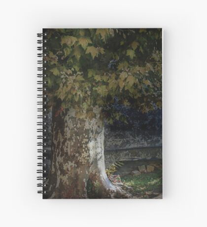 St Etienne textures Spiral Notebook