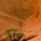 Uluru Rock Face by Dilshara Hill