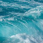 Deep Sea Wave by I C Images