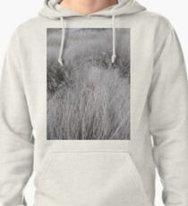 #Grass, #Stamford, #StamfordCity, #winter, #nature, #snow, #frost, #outdoors, #icee #cold, #wood, #season, #bird, #tree, #frozen, #dry, #garden, #grass, #weather, #horizontal, #colorimage, #nopeople Pullover Hoodie