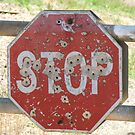 Stop Or I'll Shoot by ScenerybyDesign