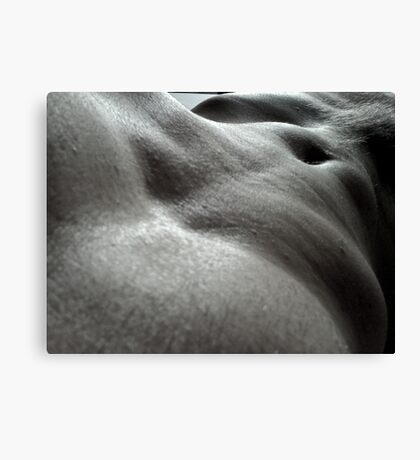 Abs tract Canvas Print