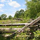 Fenced Meadow by ECH52