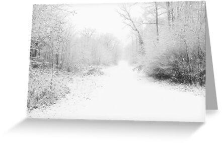 Snowy Lane by Pamela Jayne Smith