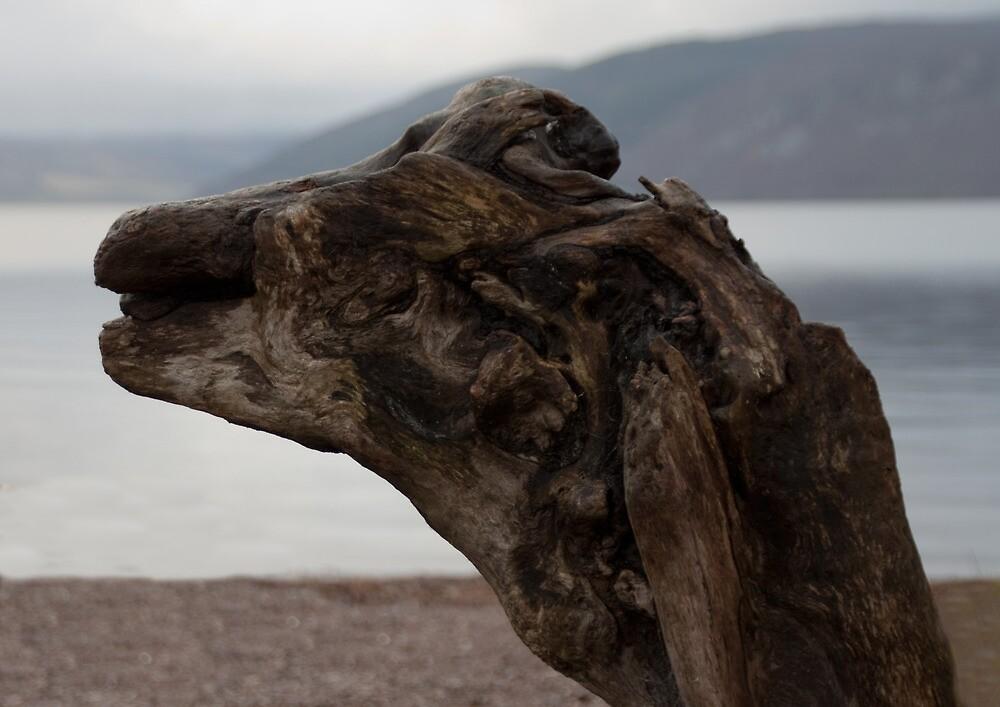 Loch Ness - Is it Nessie...?? by Scott  Andrew