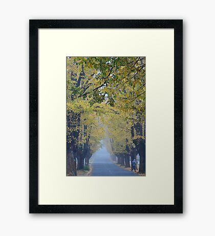 Dreamy Morning Framed Print