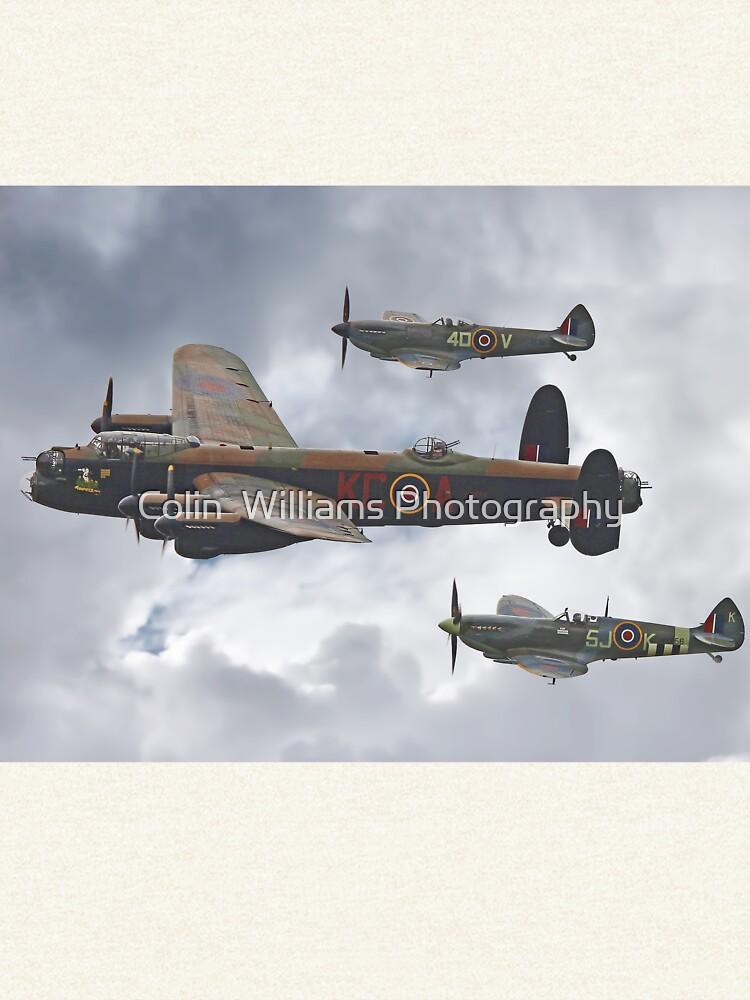 El vuelo conmemorativo de la batalla de Gran Bretaña - Shoreham 2014 de Arrowman