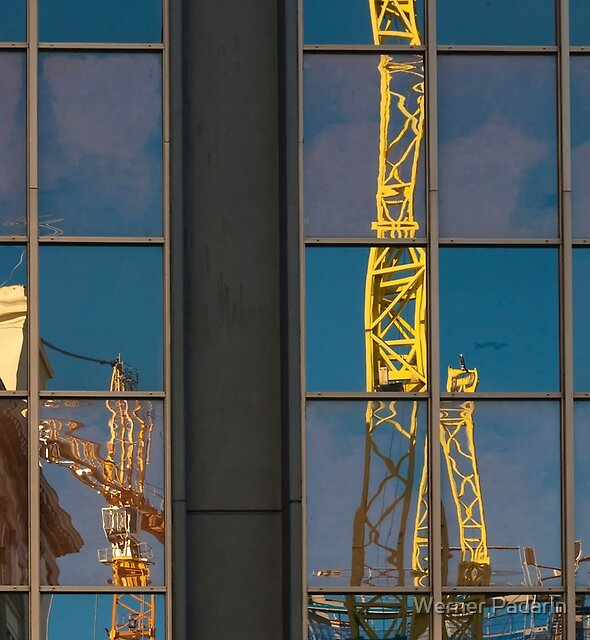 Yellow Cranes by Werner Padarin