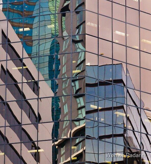 Reflecting Eagle 3 by Werner Padarin