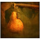 Golden Pear by browncardinal8