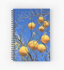 Citrus Spiral Notebook
