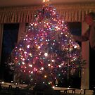 Our Tree by Marita McVeigh