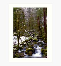 Haystack Creek, winter snow Art Print