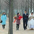 WEDDING UNDER TREES by mc27