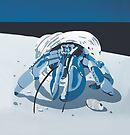 Hermit Crab DEEP BLUE SEA by Mirjam Griffioen