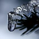 Icedrop by Tenee Attoh